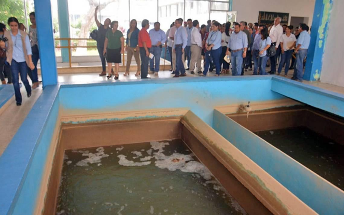 Supervisa Derechos Humanos planta potabilizadora Villahermosa - El Heraldo de Tabasco